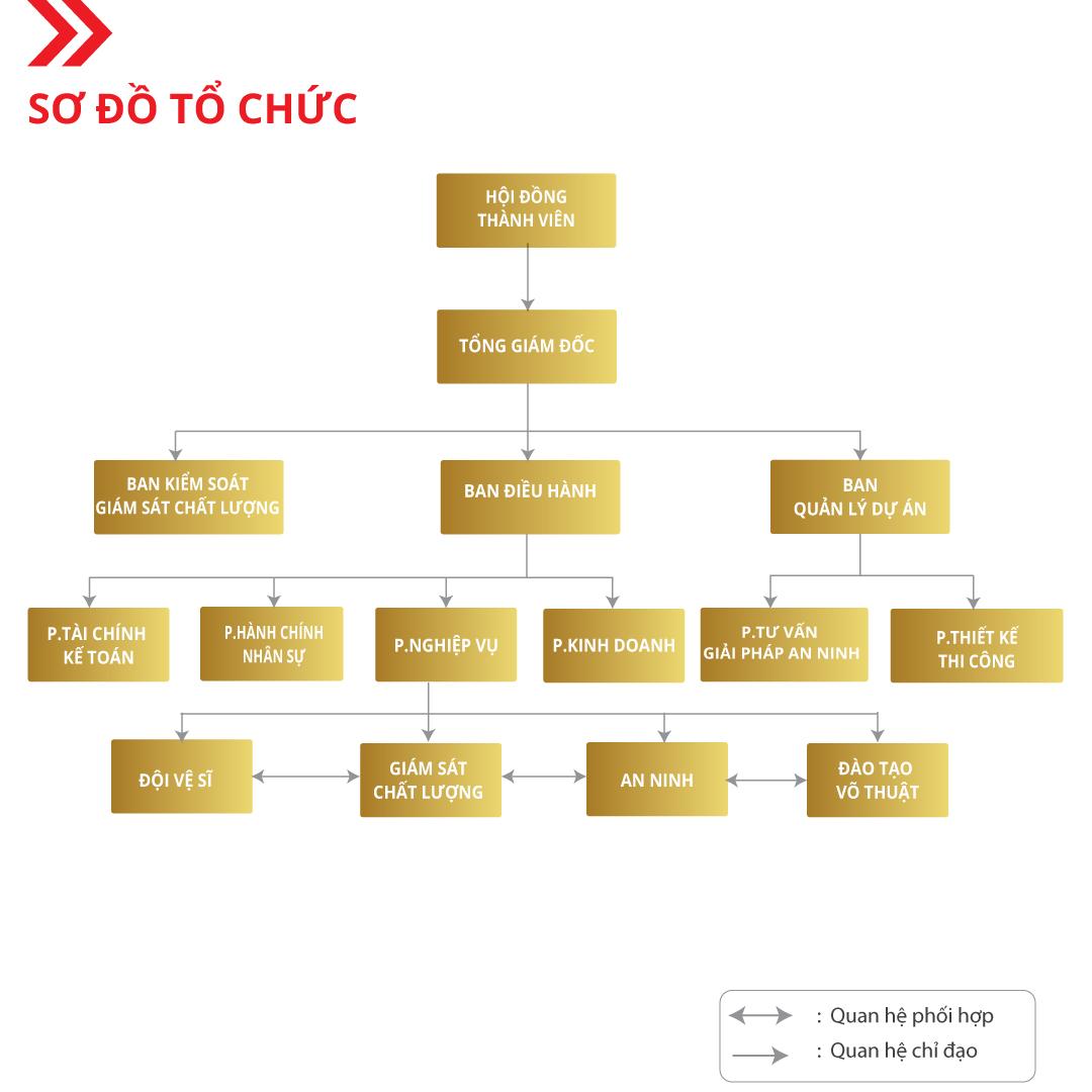 sơ đồ tổ chức công ty sos
