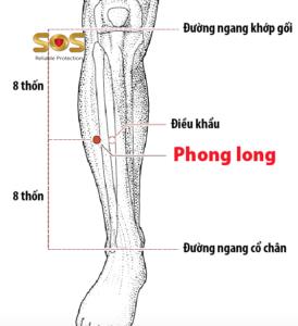 Huyệt Phong Long